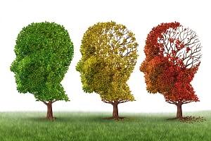 Hope For Alzheimer's Treatment