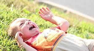 Control Toddler Tantrums